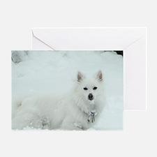 American Eskimo Dog Snow Day Greeting Card