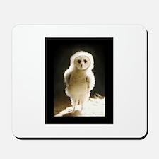 Wesley The Owl Mousepad