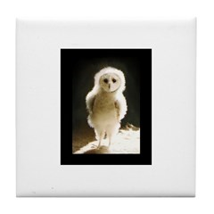 WesleyTheOwl Tile Coaster