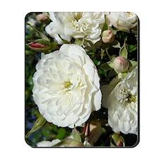Yummy White Roses Mousepad