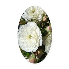 Yummy White Roses Oval Car Magnet