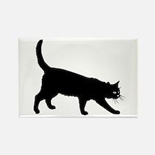 Black Cat on White Magnets