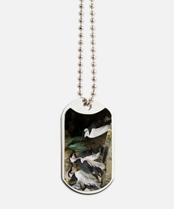 Young Common Murres Dog Tags