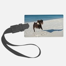 Scully Runs Inlet Beach Luggage Tag