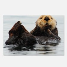 115x9_calender_otter_1 Postcards (Package of 8)