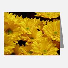 daisy Note Cards (Pk of 10)