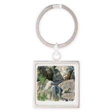 rock squirrel Square Keychain