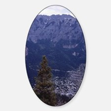 Ouray19 Decal