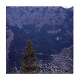 Ouray colorado Drink Coasters