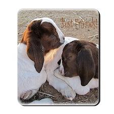 Best Friends! Mousepad