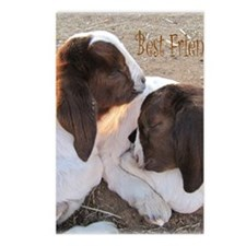 Best Friends! Postcards (Package of 8)