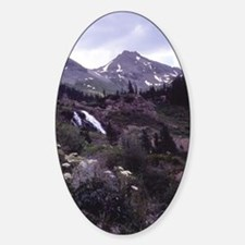 Ouray17 Decal