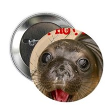 "hi 2.25"" Button"