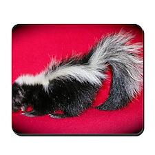 sredcarpet Mousepad