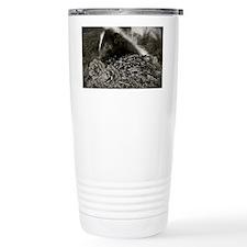 spineeesmore Travel Mug