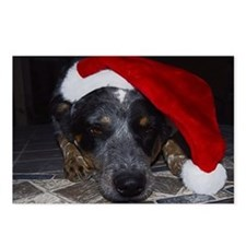 Christmas Cattle Dog Postcards (Package of 8)