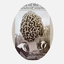 giant morel mushroom Oval Ornament