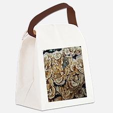 Trametes-versicolor Canvas Lunch Bag