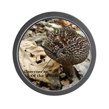 Strobilomyces Wall Clock