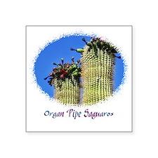 "organ pipe saguaro Square Sticker 3"" x 3"""