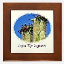 organ pipe saguaro Framed Tile