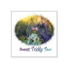 "sunset prickly pear Square Sticker 3"" x 3"""
