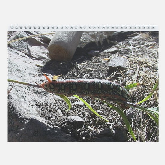 Nature Wall Calendar