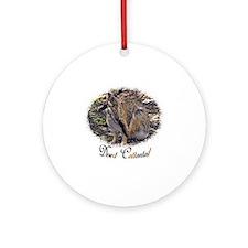 desert cottontail Round Ornament