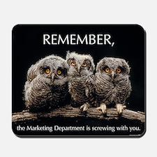 Sml_Poster_HORIZ_16x20_JAN_2012_OWLS Mousepad