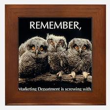 Sml_Poster_HORIZ_16x20_JAN_2012_OWLS Framed Tile