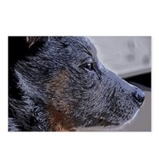 ACD PUPPy Postcards (Package of 8)