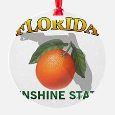 plate-blank-plain Ornament