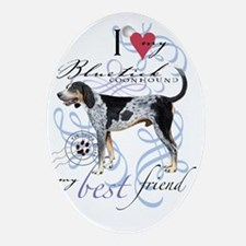 bluetick-slider2 Oval Ornament