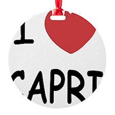 CAPRI Ornament