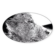 ACD Puppy Pondering Decal