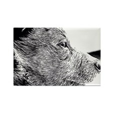 ACD Puppy Pondering Rectangle Magnet