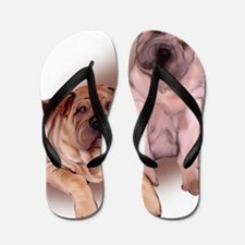 two sharpeis Flip Flops