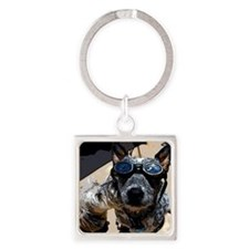 Stardom in a Cattle Dogs world Square Keychain