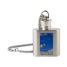 It is not the critic Flask Necklace