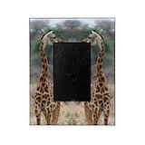 Giraffe Picture Frames