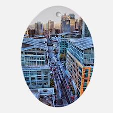 5210049514_5ea84cbce1_o Oval Ornament