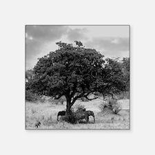 "Elephants Square Sticker 3"" x 3"""
