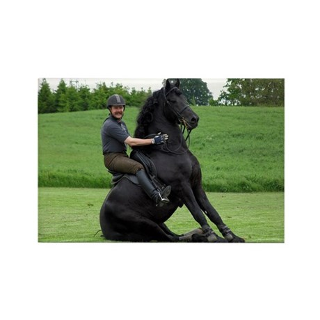 """Friesian 8"" Rectangle Magnet"