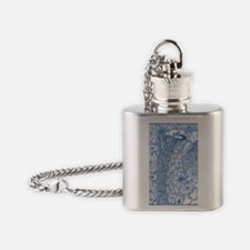 IPAD2-Peacock-Pair AN Flask Necklace