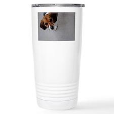DSC_0048 Travel Mug