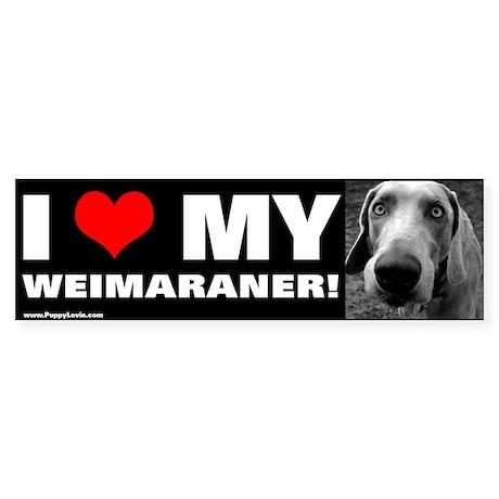 """""""I LOVE MY WEIMARANER!"""" Bumper Sticker"""