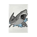 Shark Great White Ocean Rectangle Magnet (10 pack)