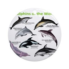 Dolphins of the World Round Ornament