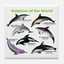 Dolphins of the World Tile Coaster