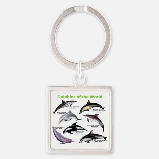 Dolphins of the World Square Keychain
